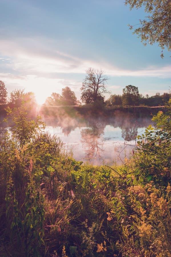 Morgonlandskap på en flod med mist över vattnet royaltyfri fotografi