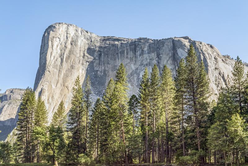 Morgonljus på El Capitan - den Yosemtie nationalparken royaltyfria foton
