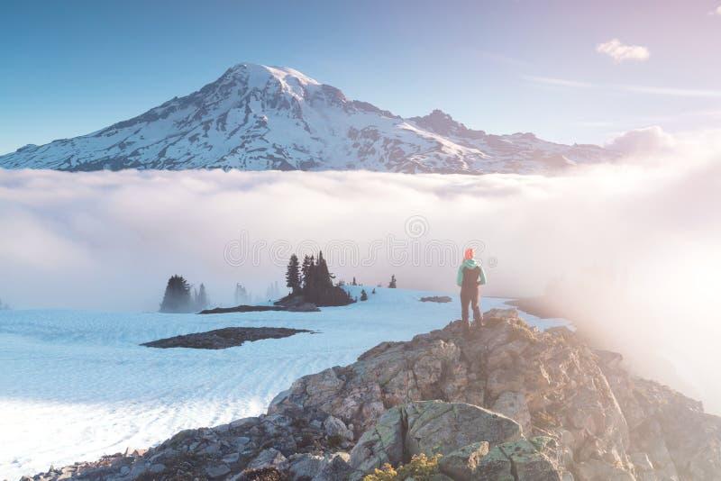 Morgonljushöjdpunkt ovanför molnlagret på Mount Rainier Härligt Paradise område, staten Washington, USA royaltyfri bild