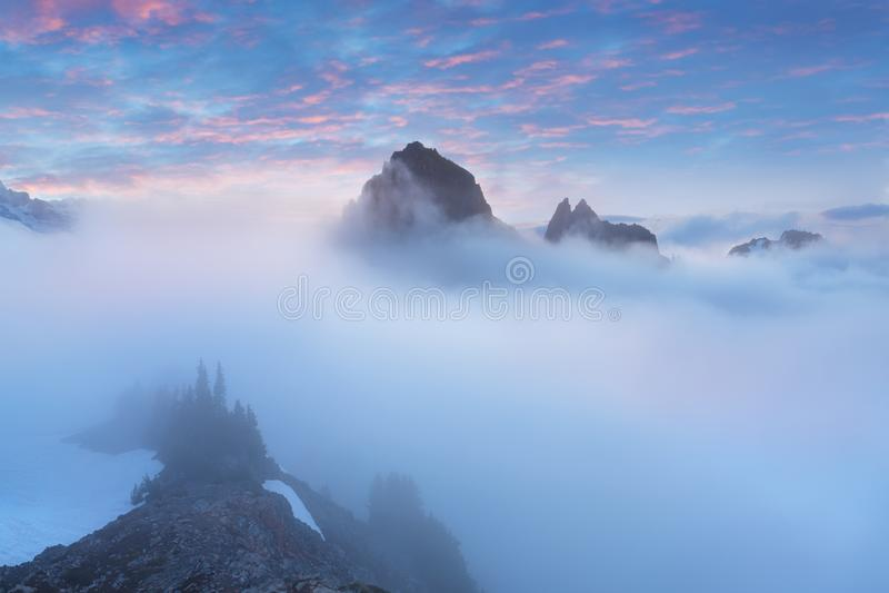 Morgonljush?jdpunkt ovanf?r molnlagret p? Mount Rainier H?rligt Paradise omr?de, staten Washington, USA arkivfoton