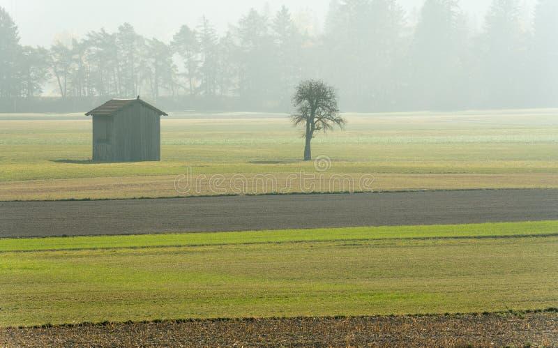 Morgonmist i en bergdal med fält och en gammal träladugård och träd med skogen i dimma bakom arkivbilder