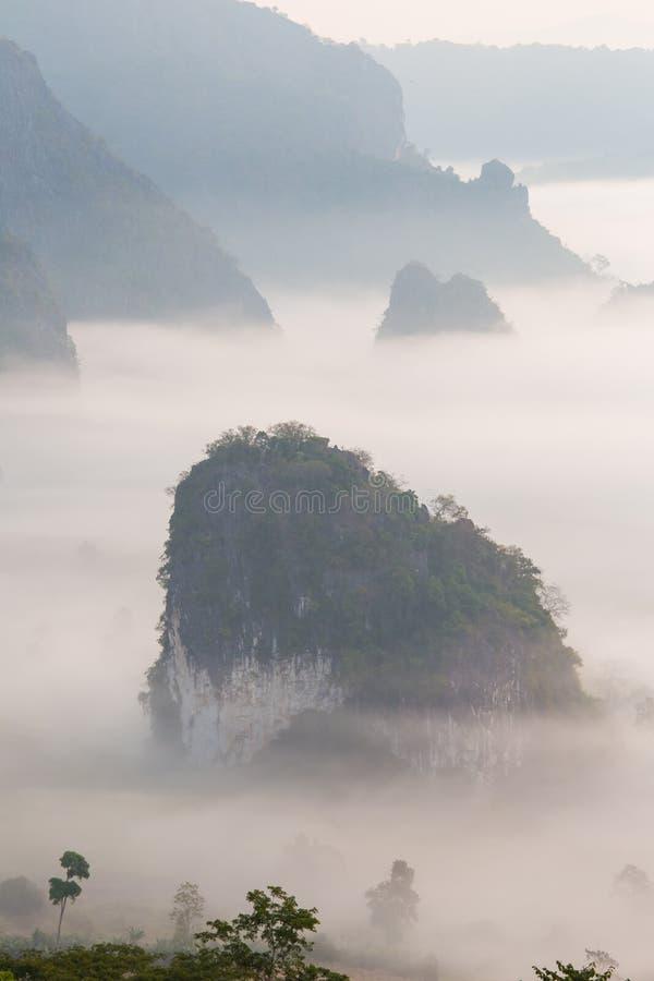 Morgonmist med berget royaltyfri fotografi