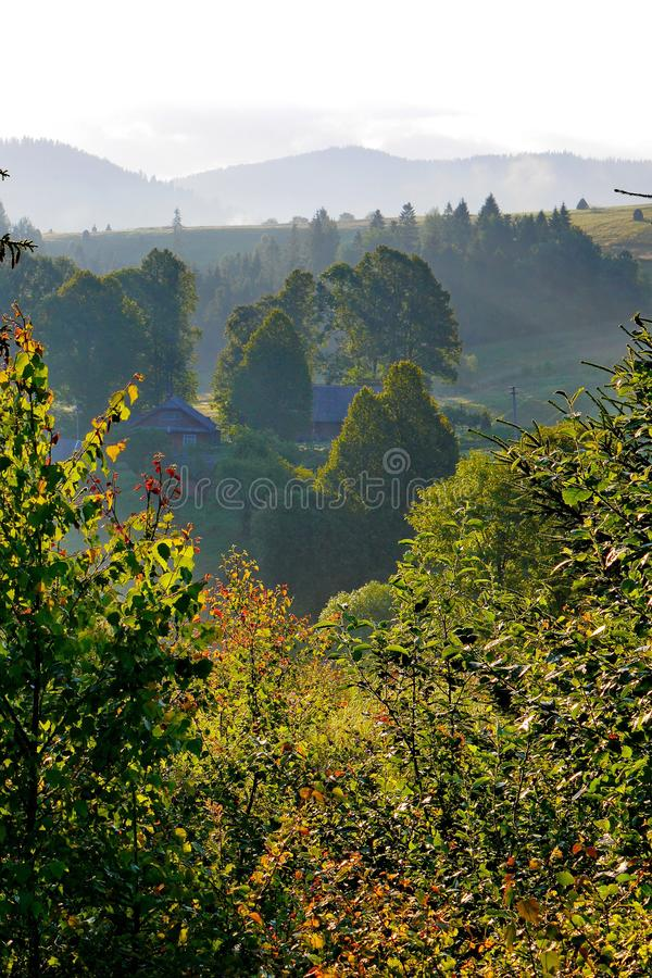Morgonogenomskinlighet över blasten av berg och träd och de första strålarna av resningsolen Skönheten och lugnen av fotografering för bildbyråer