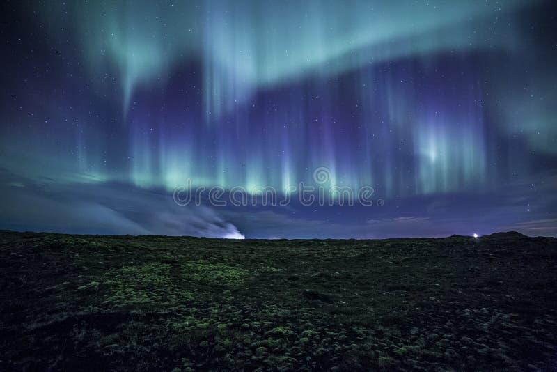 Morgonrodnad över mossig isländska Lava Field royaltyfri foto