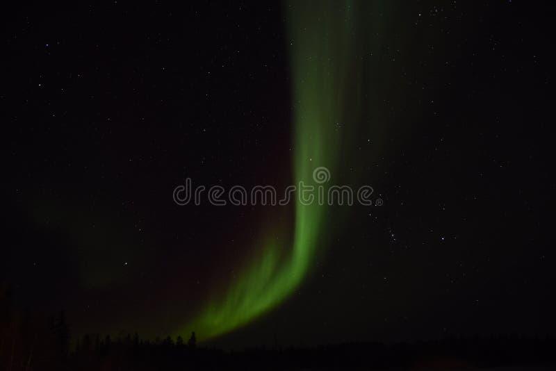 Morgonrodnad i Yellowknife royaltyfri foto