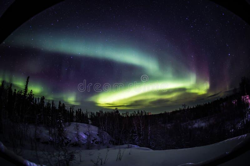 Morgonrodnad i Yellowknife Kanada royaltyfria bilder