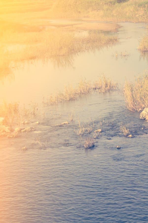 Morgonsignalljuset i naturen som göras med filtret, tappningtoning arkivbilder