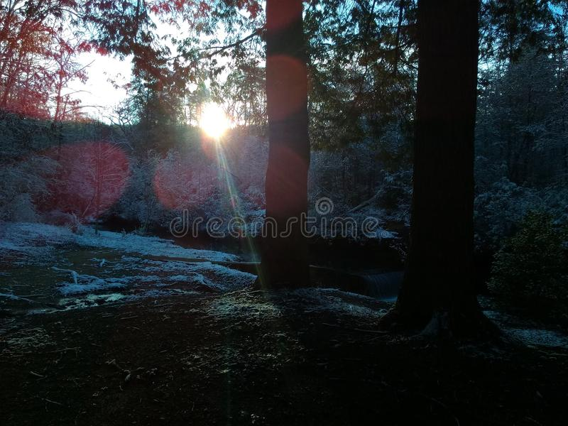 Morgonsol som skiner arkivfoto