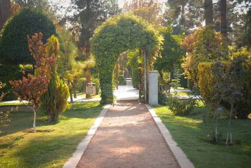 Morgonsolljussken på den Eram trädgårdallmänheten parkerar Shiraz Iran royaltyfri bild