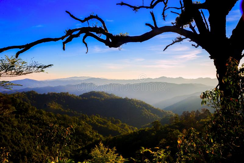 Morgonsoluppgång över mist fotografering för bildbyråer