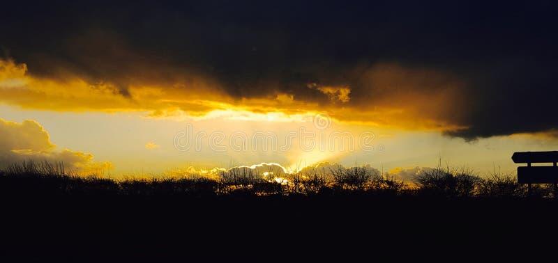 Morgonsoluppgång, Hampshire, U K royaltyfri foto