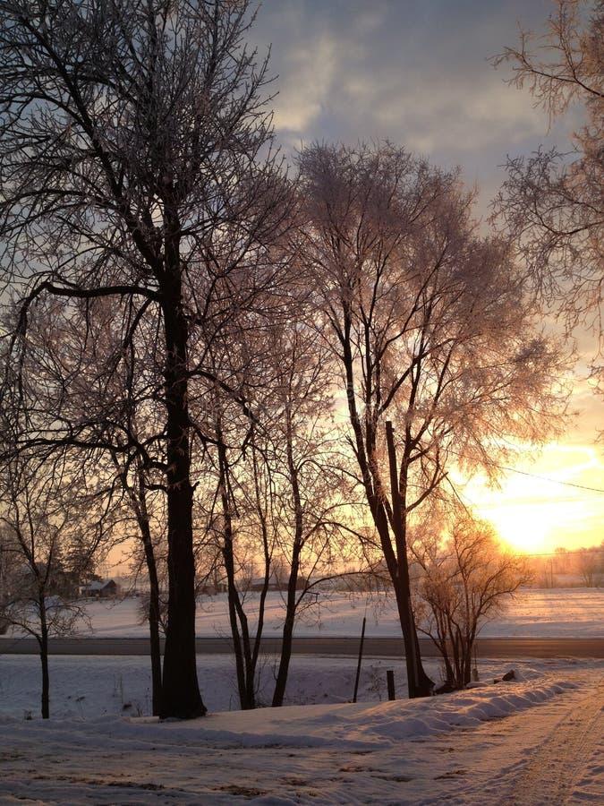 Morgonsoluppgång ut i landet royaltyfria bilder