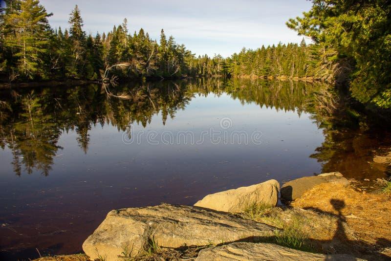 Morgonstillhet på sjön arkivbild