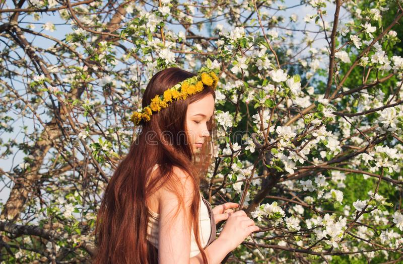 Mori forest girl with brown hair on the background of a blooming apple tree royalty free stock photos