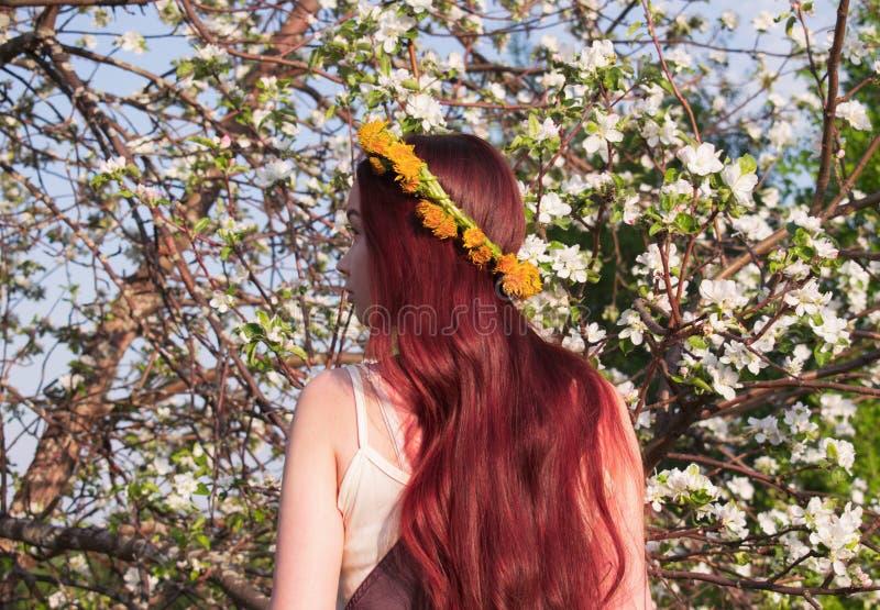 Mori skogflicka med rött hår på bakgrunden av ett blommande äppleträd fotografering för bildbyråer