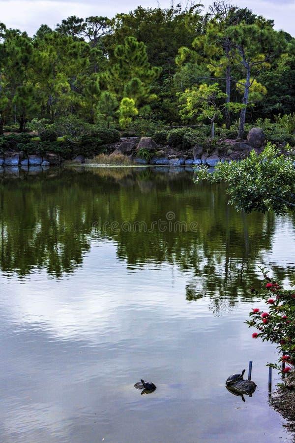 Morikami博物馆和日本庭院德尔雷比奇佛罗里达 图库摄影