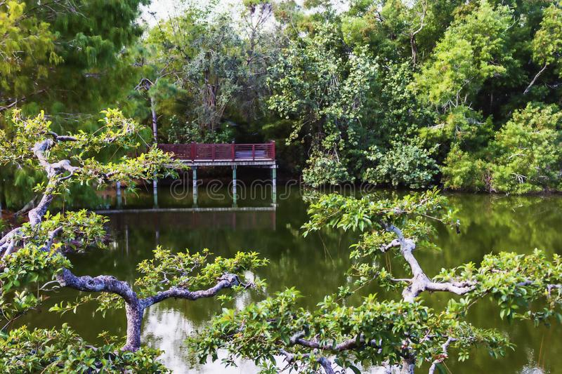 Morikami Museum and Japanese Garden Delray Beach Florida. The Morikami Museum and Japanese Gardens were established in 1977. It is a recognized center for stock image