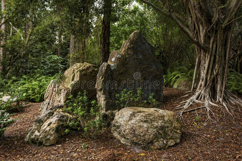 Morikami Museum and Japanese Garden Delray Beach Florida. The Morikami Museum and Japanese Gardens were established in 1977. It is a recognized center for royalty free stock images