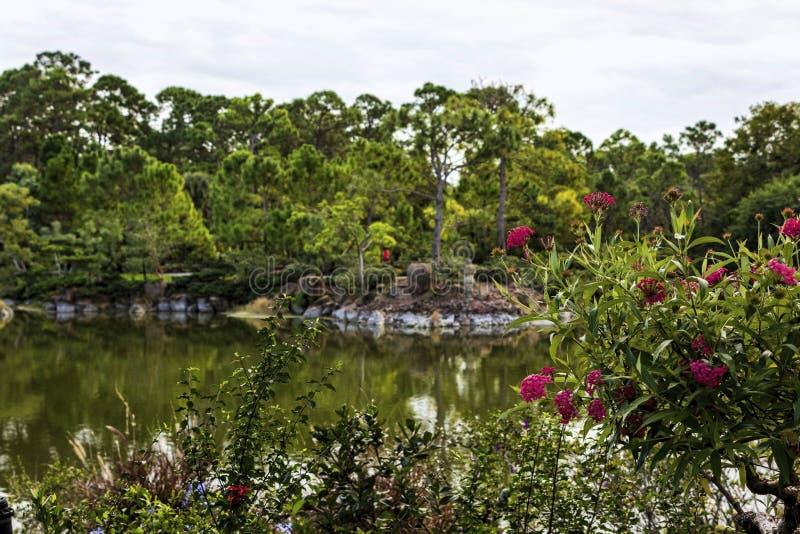 Morikami-Museum und japanischer Garten Delray Beach Florida lizenzfreie stockbilder