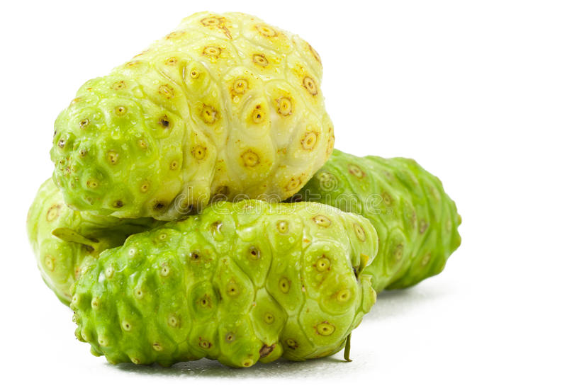 Morinda fruit,Thailand royalty free stock photos