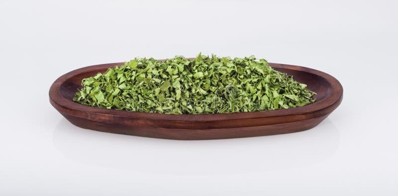 Moringa стоковое изображение