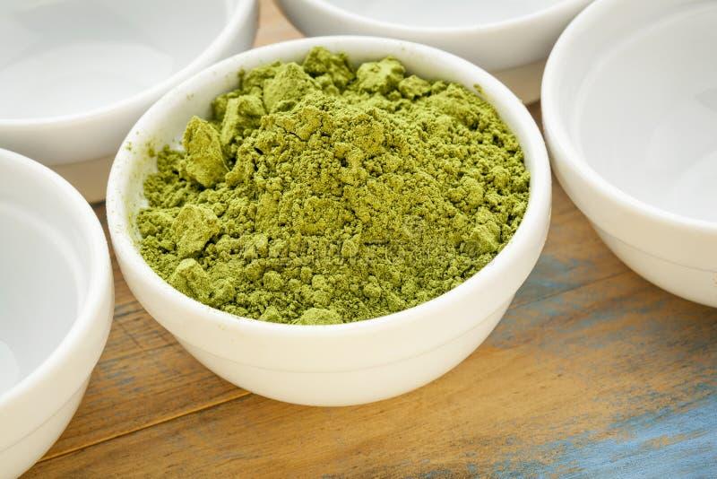 Moringa bladpoeder stock afbeelding