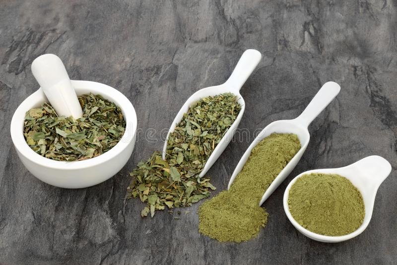 Moringa Herb Leaf und Pulver stockfotografie