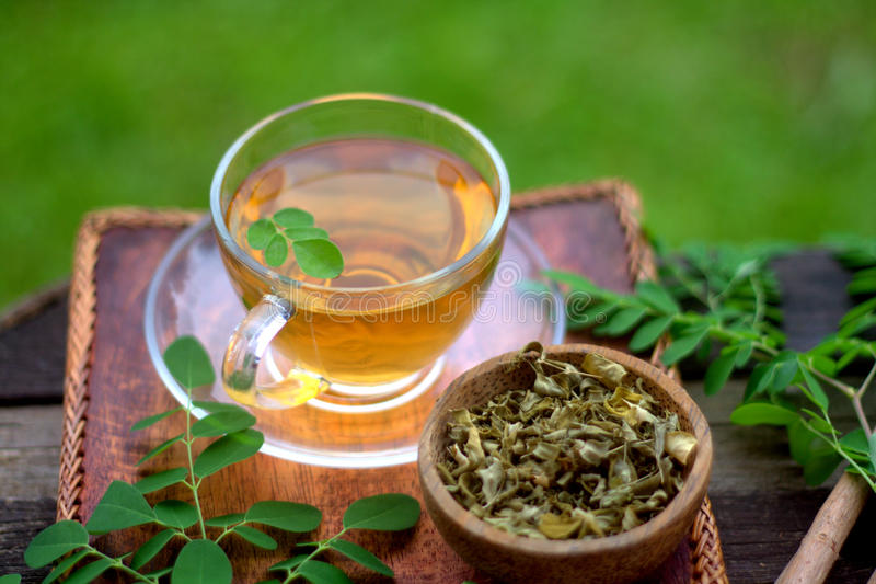 Moringa herbal tea in stock image