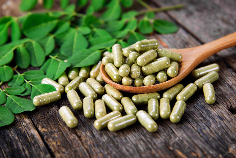 Moringa leaves and capsules. Herbs for health royalty free stock image
