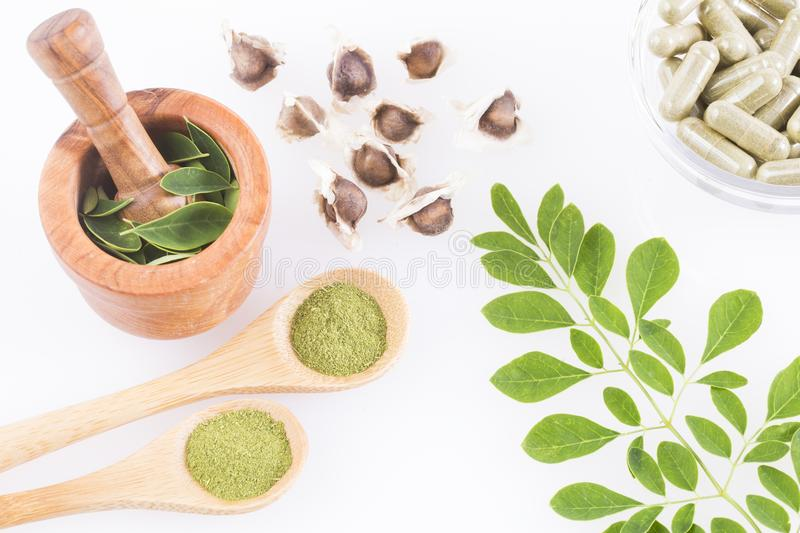 Moringa nutritional plant - Moringa oleifera. Moringa the species with the most nutritional value stock images
