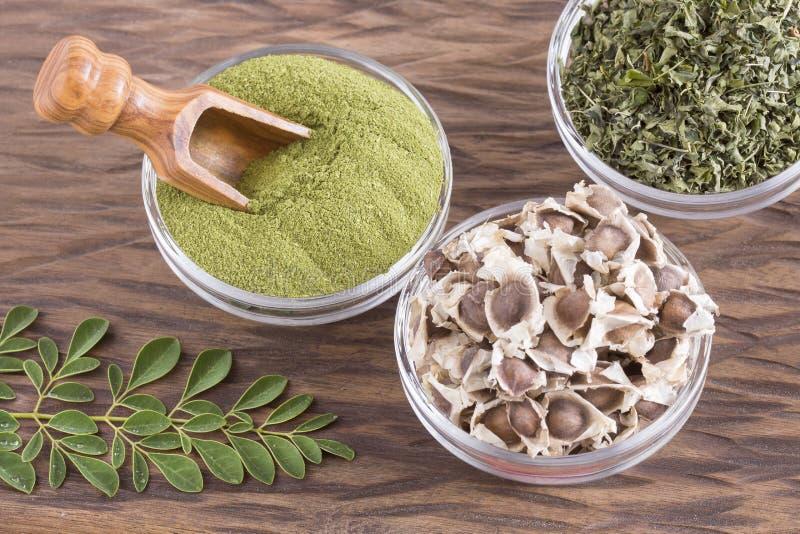 Moringa nutritional plant - Moringa oleifera. Moringa the species with the most nutritional value stock photos