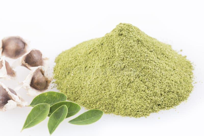 Moringa nutritional plant - Moringa oleifera. Moringa the species with the most nutritional value stock photo
