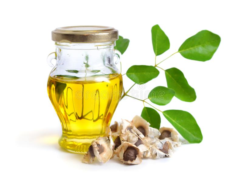 Moringa oleifera πετρέλαιο με τους σπόρους και leawes Απομονωμένος στο άσπρο BA στοκ εικόνες