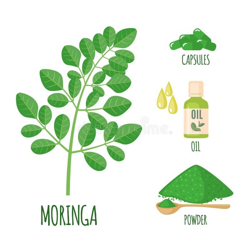 Moringa a placé avec la poudre, l'huile et les capsules dans le style plat d'isolement sur le blanc illustration stock