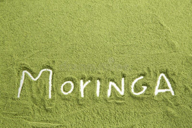 Moringa-Pulver - Moringa.oleifera lizenzfreie stockfotografie