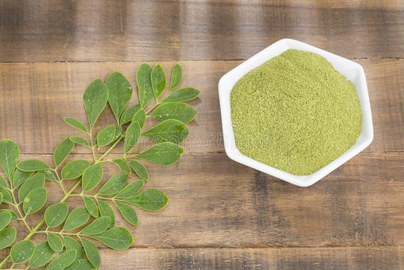 Moringa voedingsinstallatie - oleifera Moringa stock foto