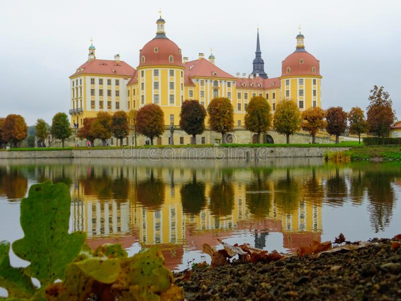 Moritzburg castle near Dresden Germany. With dear stock images