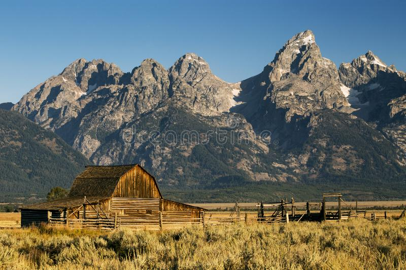 Mormon Row Barn in Autumn Colors, Grand Teton National Park, Wyoming. Morning in the Grand Tetons on Mormon Row. Moulton Barn stock image