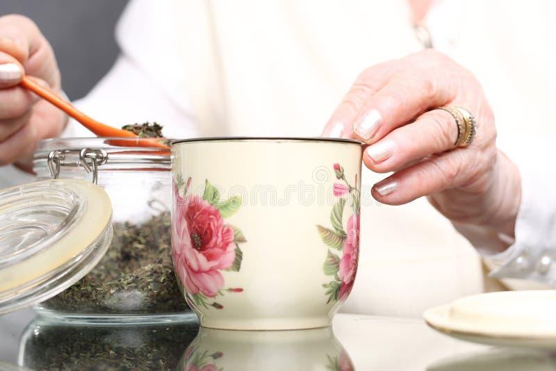 Mormors örter för förkylningar royaltyfri bild