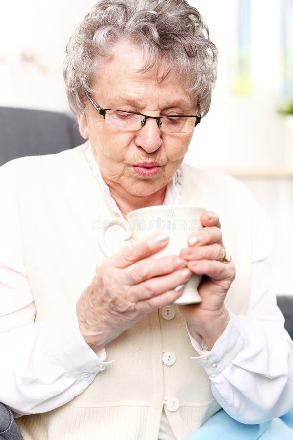 Mormors första hjälpensats, en avkok av örter arkivfoton
