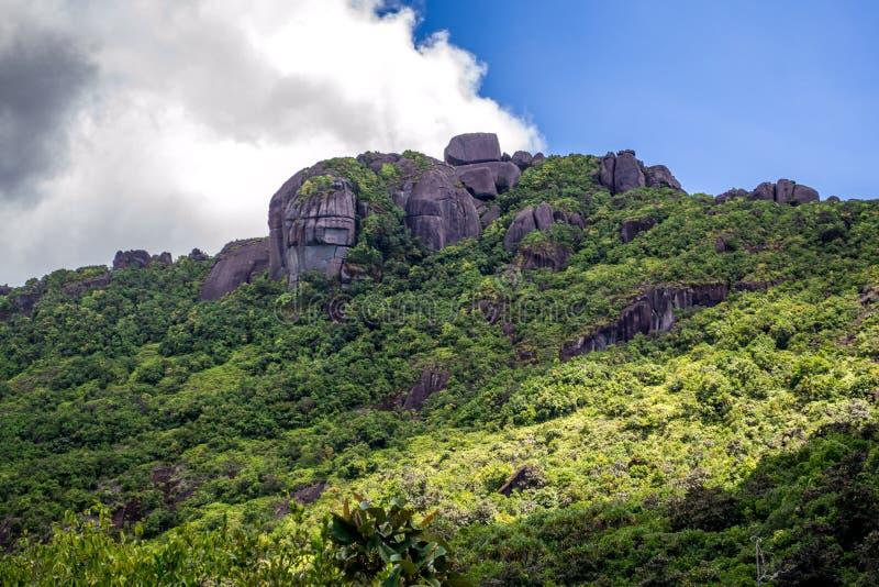Morne Seychellois National Park - Mahe - Seychellen royalty-vrije stock afbeelding