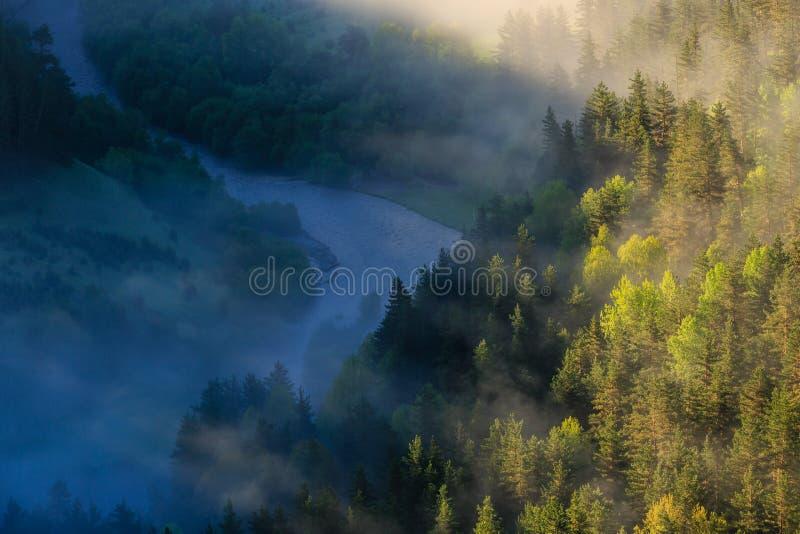 Mornende mist op de rivier, zonnestralen die door de mist breken. Fairytale mystical Foggy Forest stock foto