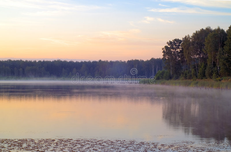 Mornig above water royalty free stock images