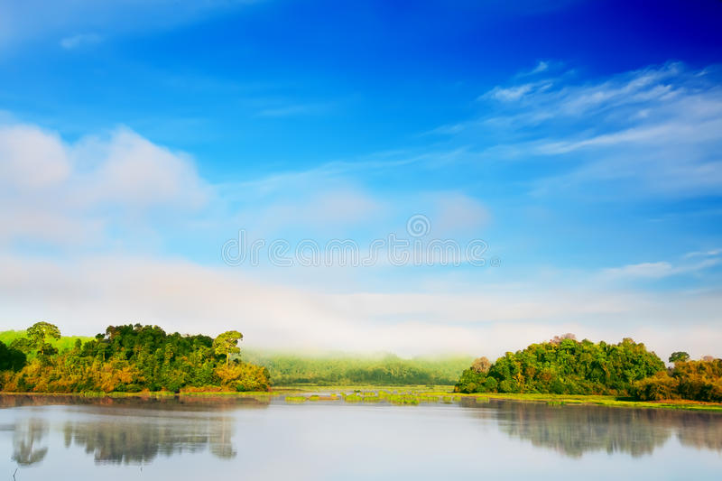 Morning stock photography