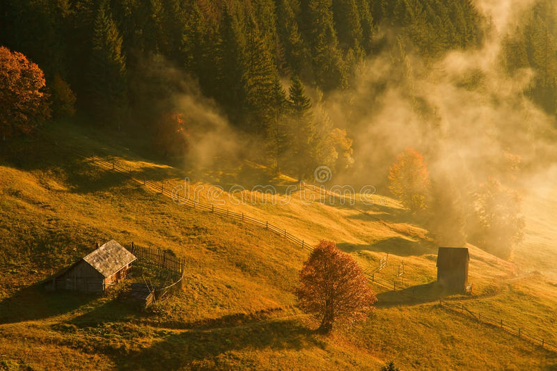 Morning Autumn stock images