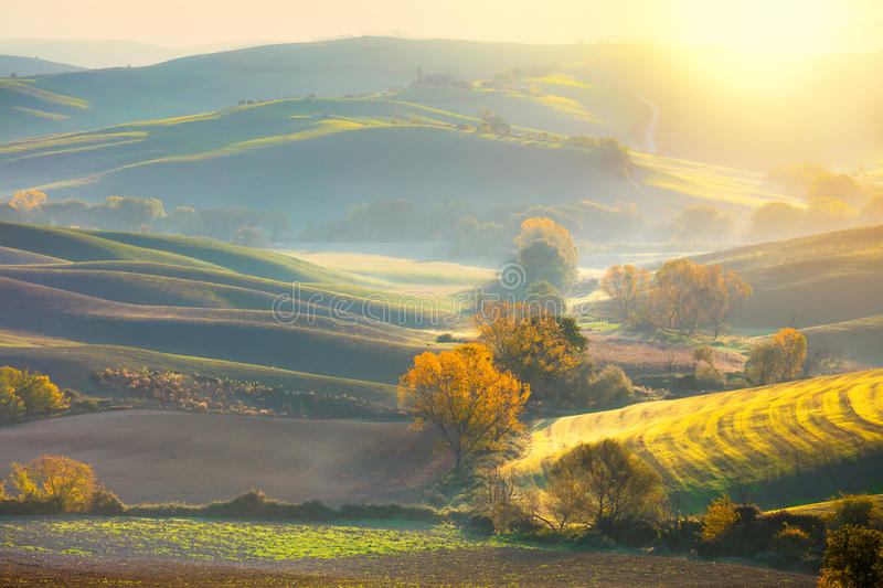 Morning Autumn landscape - fall season and sunshine. Soft Morning Autumn landscape - fall season - Golden Trees in Wavy fields at sunrise, Tuscany, Italy, Europe royalty free stock image