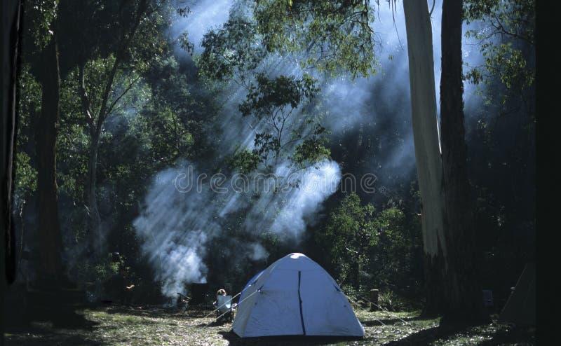 Morning at Balington Tops_jpg. Morning at Balington Tops NSW Australiarn royalty free stock image