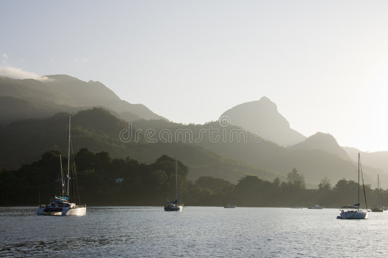 Morning in the bay royalty free stock images