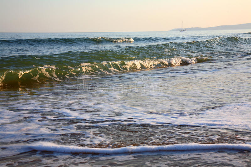 Download Morning on beach. stock photo. Image of inflow, waves - 11721408