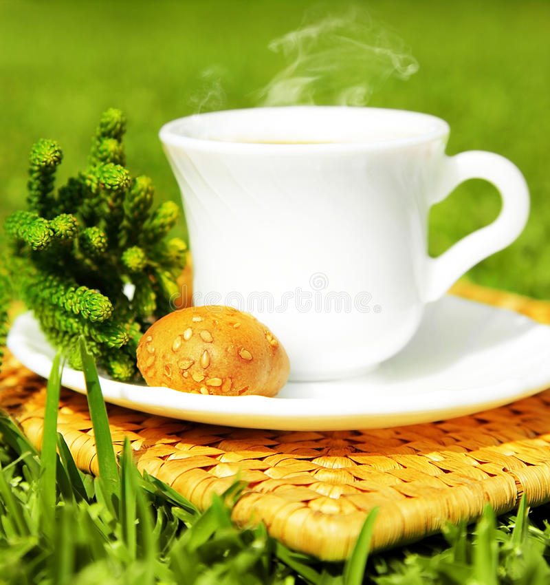 Download Morning beverage stock photo. Image of coffee, crouton - 18774836